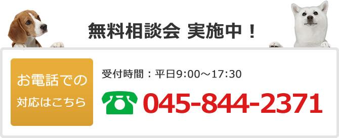 電話でのお問い合わせは045-844-2371